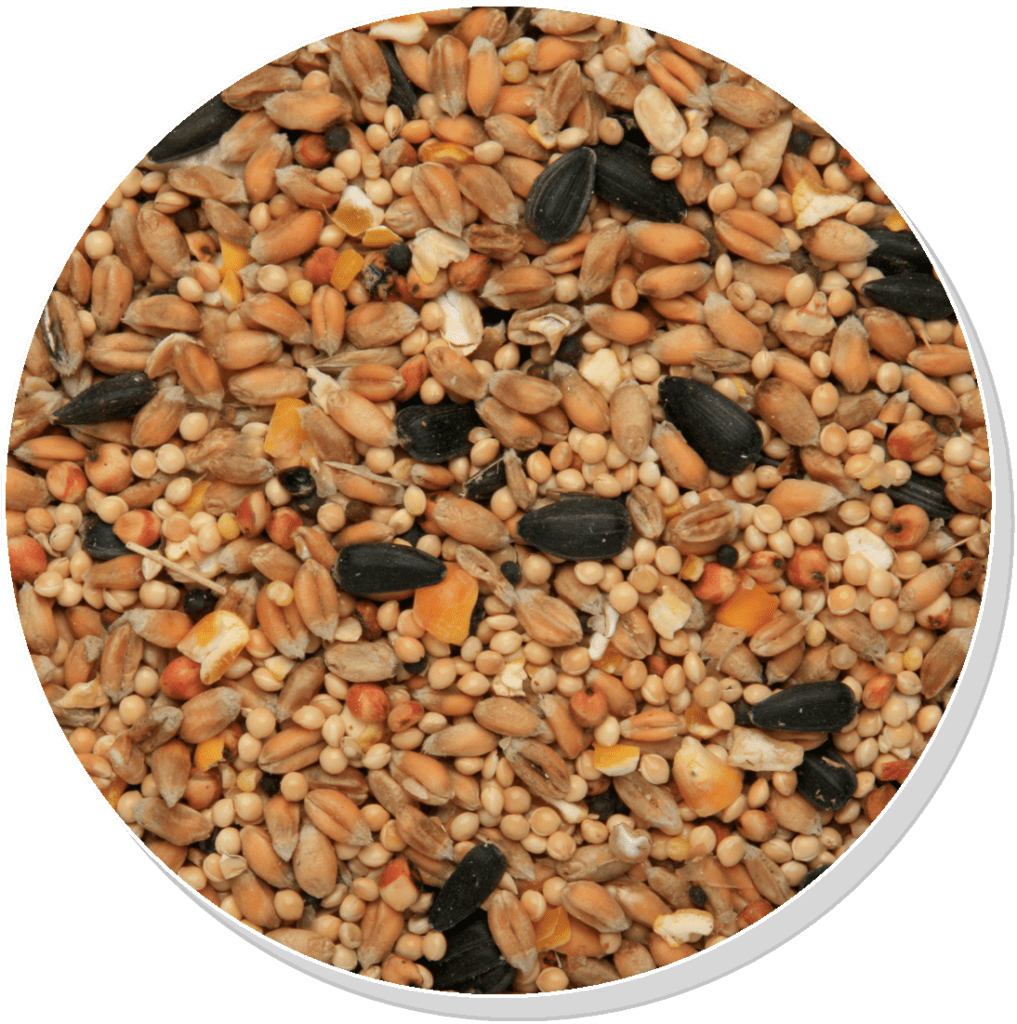 Garden Bird Food - Copdock Mill Seed & Grain Mix