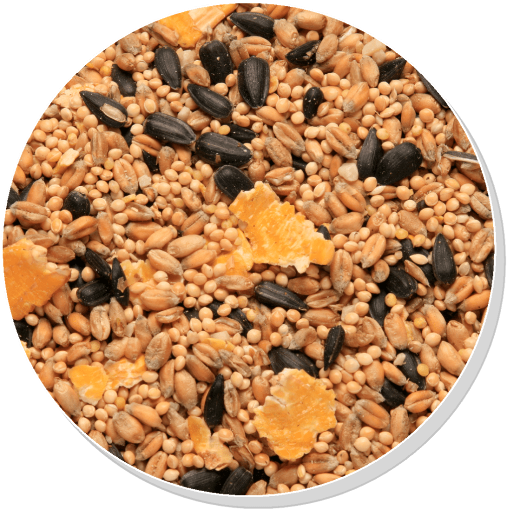 Copdock Mill Summer Mix - Garden Bird Seed